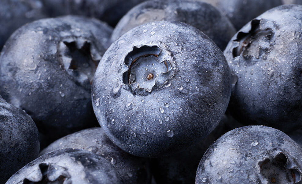 DelMonteProductImage-Blueberries-988X604