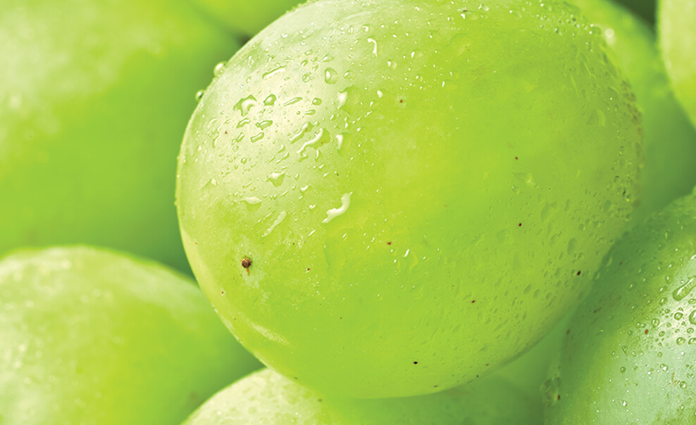 DelMonteProductImage-Macro-Grapes_Green-988X604