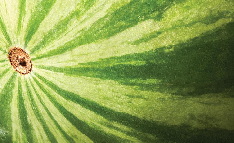 DelMonteProductImage-Macro-Watermelon_1-988X604